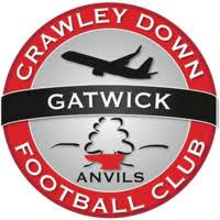 Crawley Down Gatwick Logo