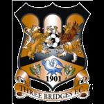 Three Bridges Logo