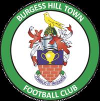 Burgess Hill Town Ladies Logo