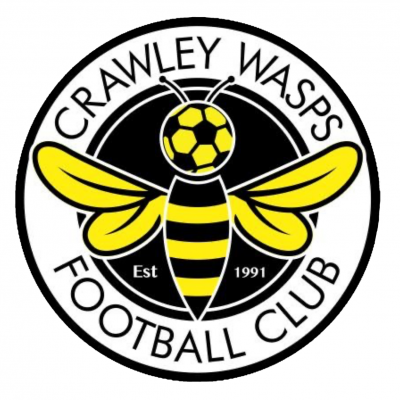 Crawley Wasps Logo